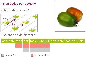 Tomate pera caña como cultivar
